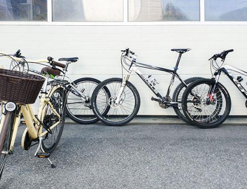Megabit bike-day